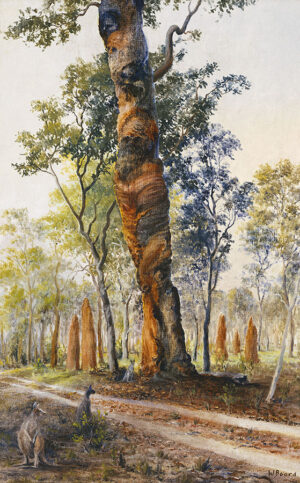 """The Spirit Tree"""