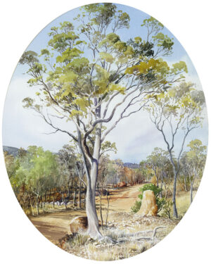 """""""The Road to Chillagoe"""""""